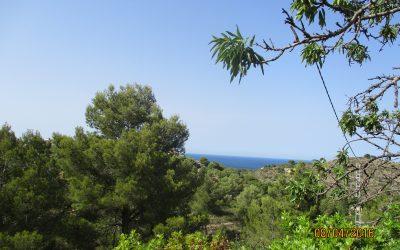 Parcelas con vistas al Mar en Dénia