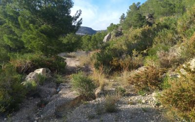 Se vende terreno en Altea