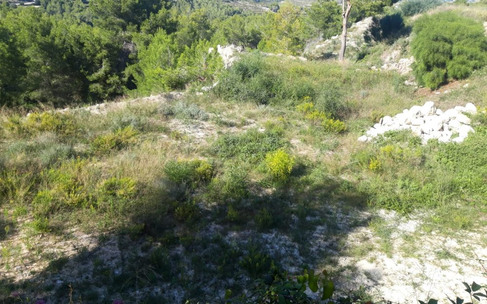Se vende terreno en Teulada